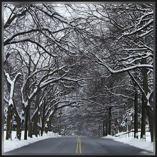 Winter Street Scene: Park Ave, Paterson NJ | by Tony Fischer Photography