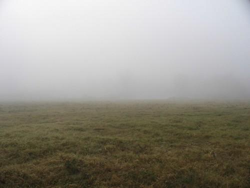 Empty Foggy Field Josh Flickr