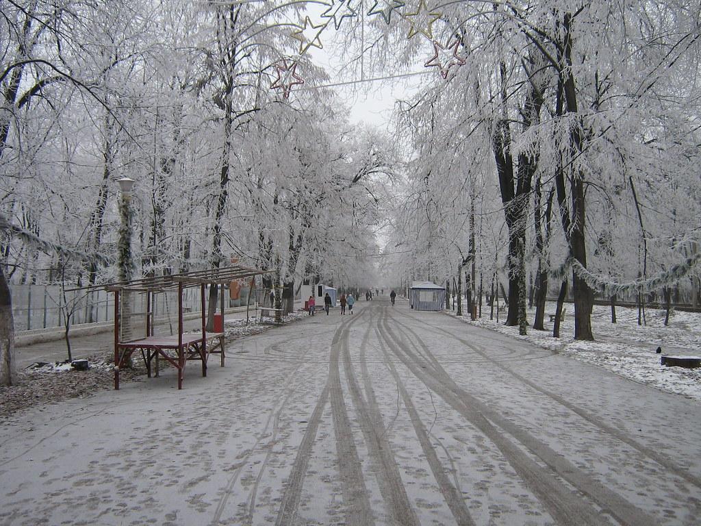Parcul monument