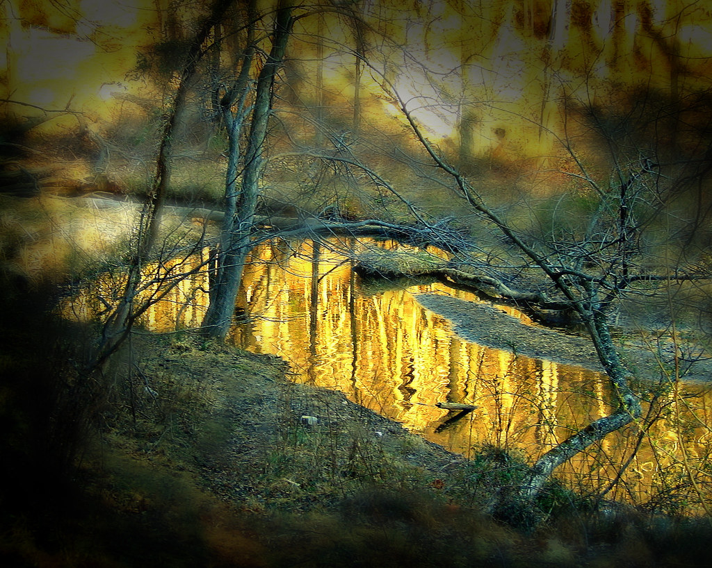 River of gold | A tranquil river of gold flows through my ...