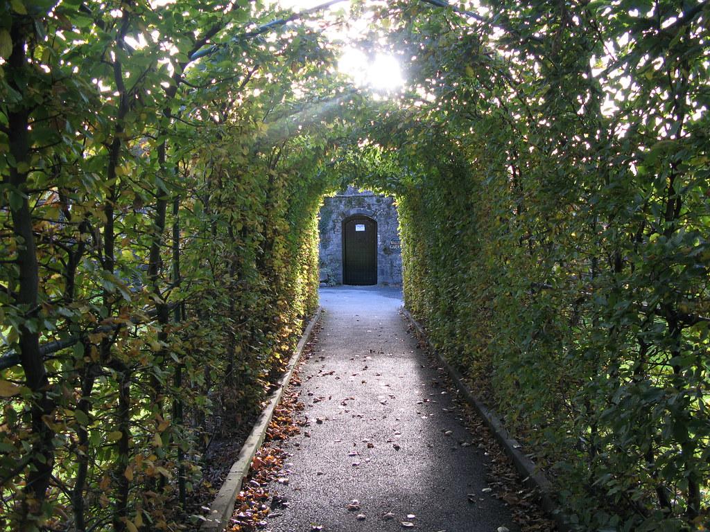 Image Result For A Secret Garden
