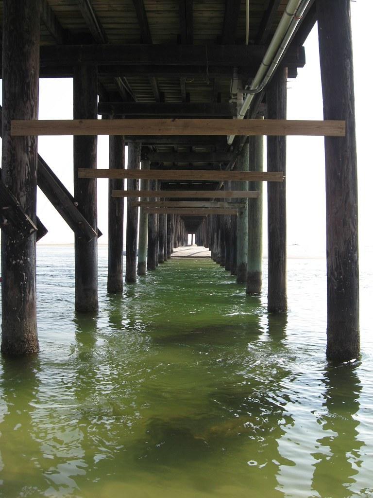 Dauphin island public fishing pier and sand pelican isla for Dauphin island fishing report
