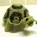 Tortoise with Leaf