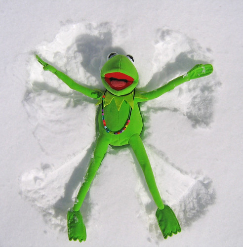 Kermit Snow Angel (1st Place Boston Globe) | by David Lee Tiller