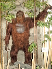 Gigantopithecus blacki | by Sam_Wise