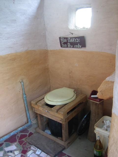 Amanda bathroom peeing potty toilet