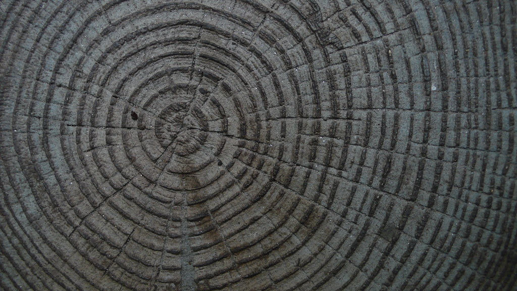 Eden tropical dome wood flooring tim regan flickr for Eden hardwood flooring