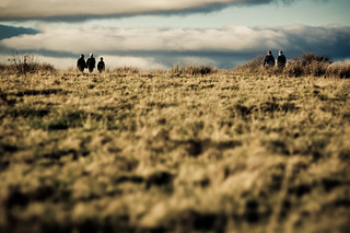 Meeting on the Moor... | by Ben Cooper