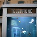 phone booth aquarium