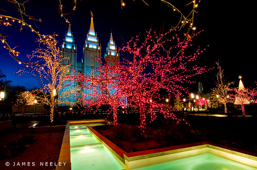 Joy of the Season | by James Neeley