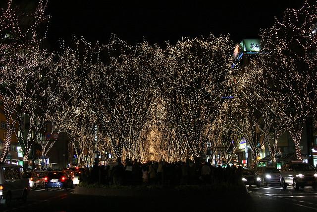 光輝くケヤキの木々(SENDAI光のページェント)