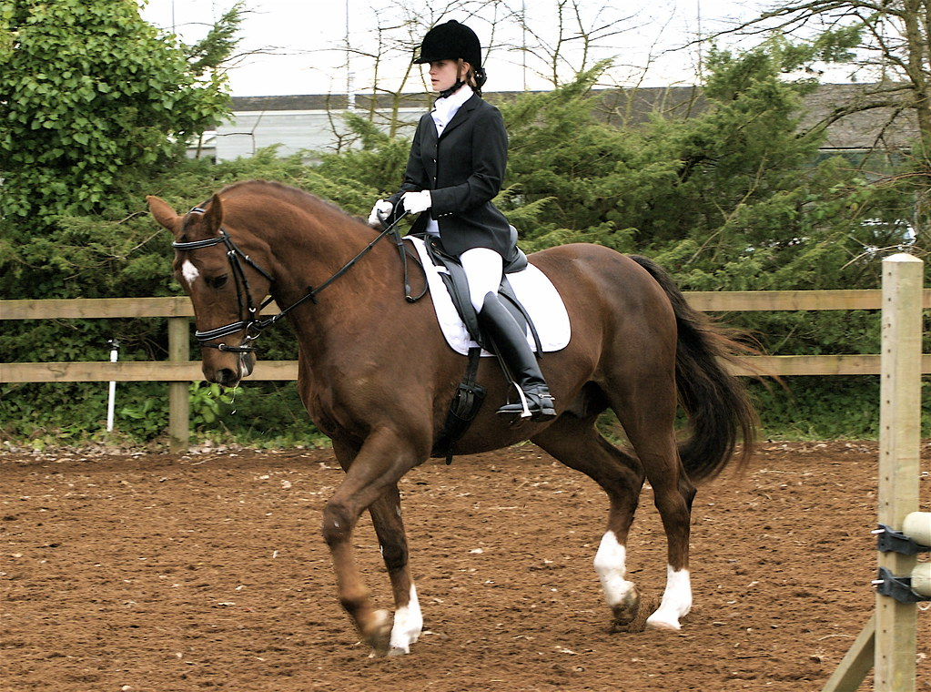 For J.M. Dressage, Southlands Riding Club   What An ...