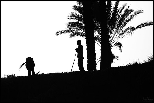 west bank silhouette... | by John FotoHouse