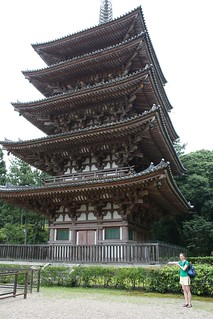 the daigo-ji pagoda again | by Doctor Memory