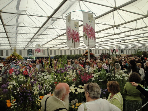 Main Marquee crowds | by RHR Horticulture