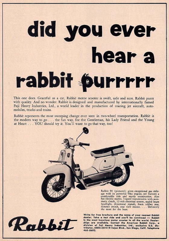 Rabbit scooter