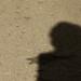 Sombras, nada más (PS)
