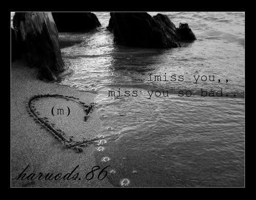 ღ I Miss You My Best Friend ღ Hάruǿďs86 Flickr