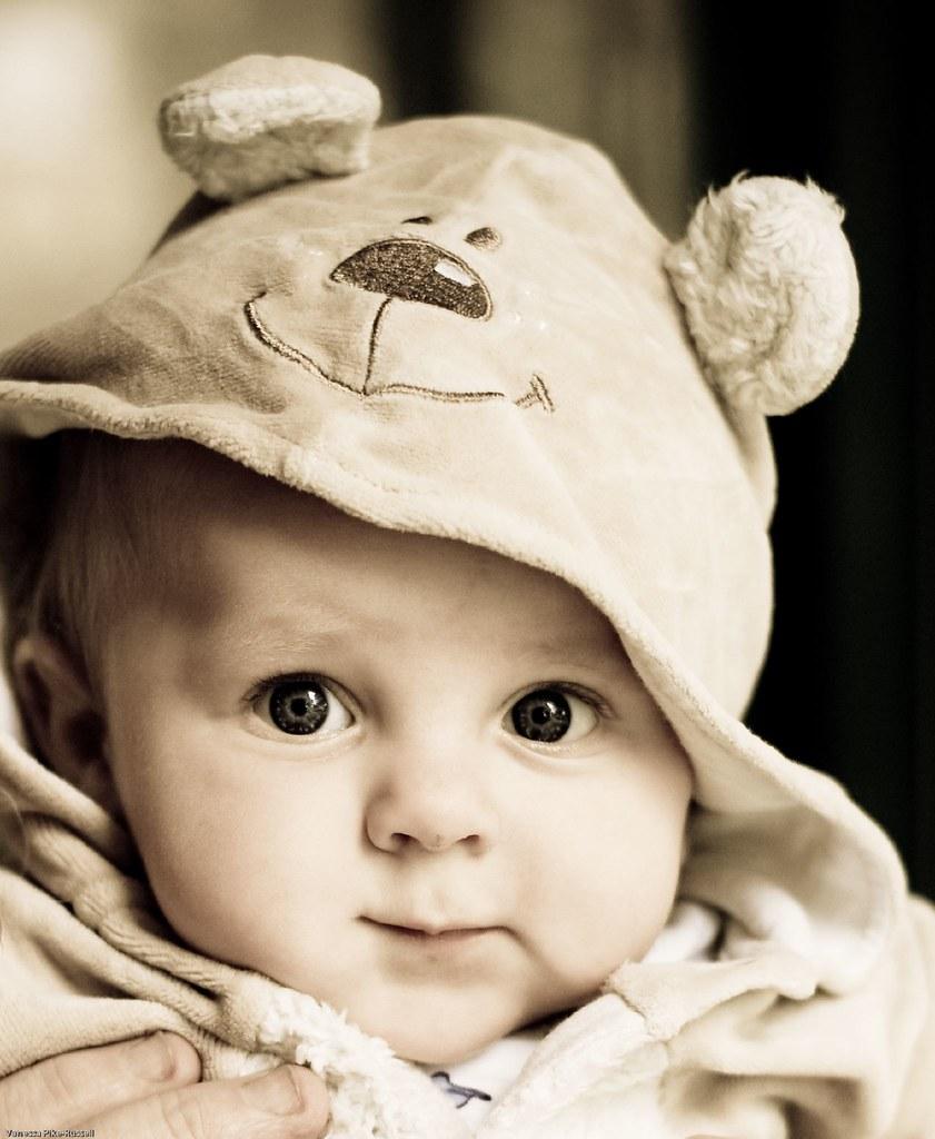 Image Result For Teddy Bear Teddy