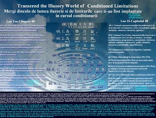 Transcend the Illusory World of Conditioned Limitations | by LAO TZU - FALLING IN TAO