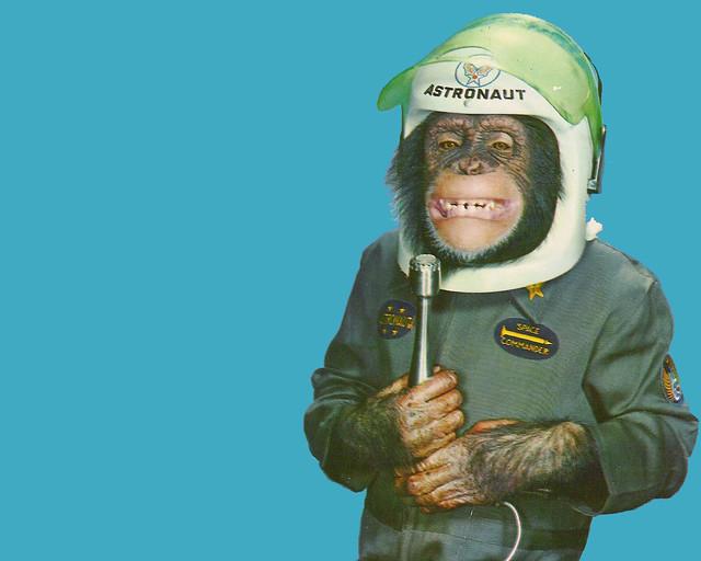 chimpanze astronaut - photo #23