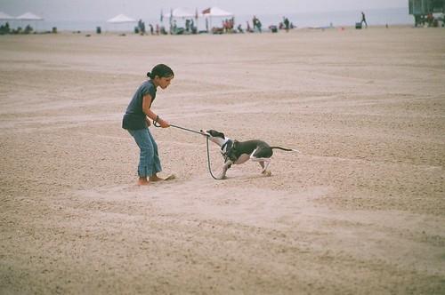 Dogging Beach Video