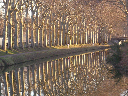 Canal automnal, Canal du Midi, France | by villerose4431