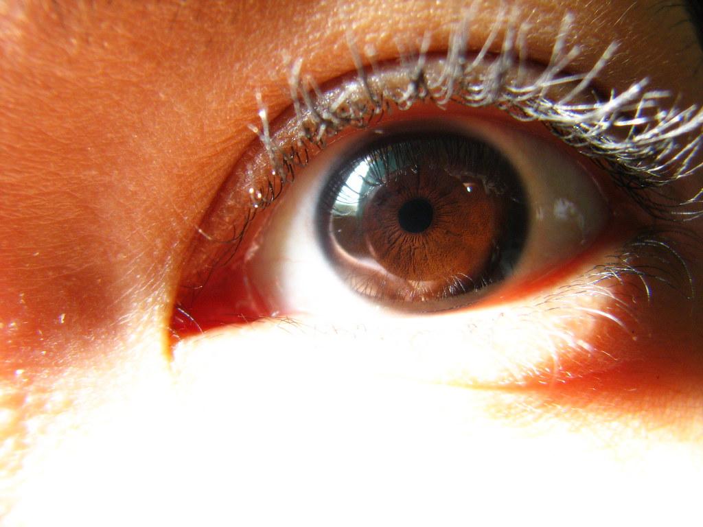 My Dark Brown Eye (Left) | I have deep dark brown eyes ...