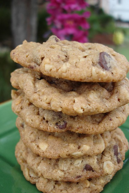 Chunky Peanut Butter & Oatmeal Chocolate Chipsters | Flickr - Photo ...