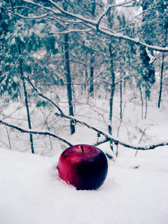 Crimson Apple | by {peace&love♥}