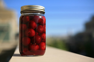 Maraschino Cherries | by theorem