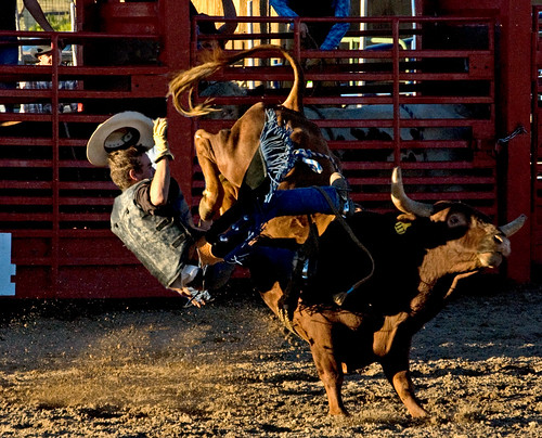 Cowboy Falling On His Arse | by Brian_Kellett