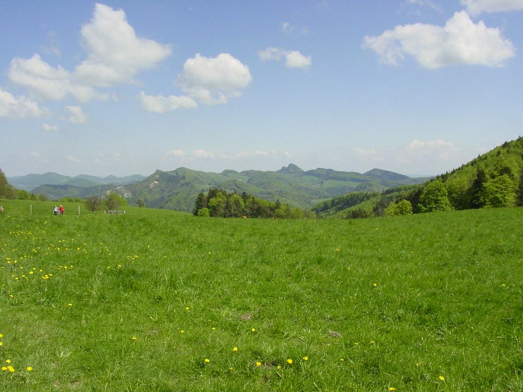 Sound Of Music  Hills Switzerland Roy Schreffler