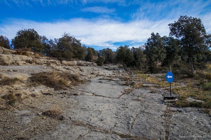 Camí Ral de Vic a Olot a la altura de Puigsespedres