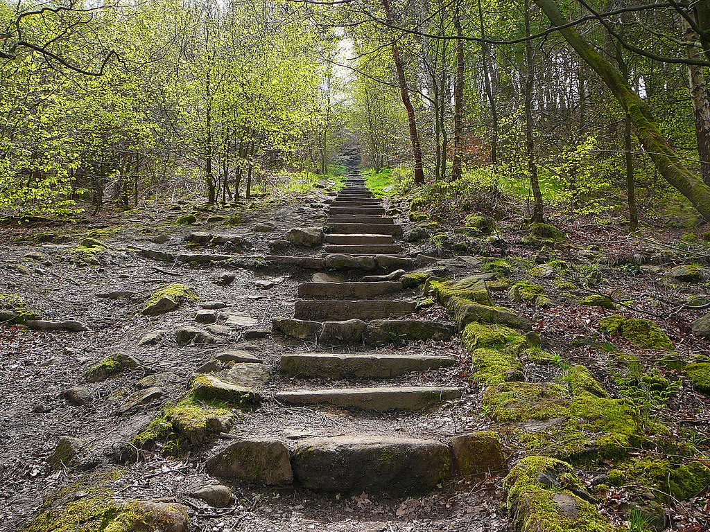 Image result for otley chevin steps