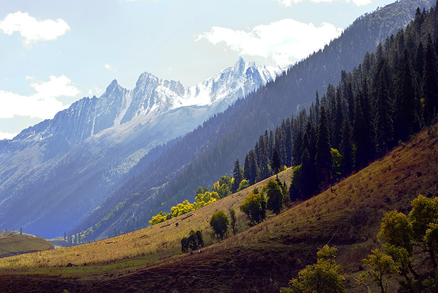 Sonmarg India  city photo : Sonmarg, Kashmir, India | Flickr Photo Sharing!