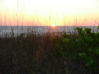 Bonita Beach Florida Hotels