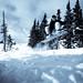 Selenium Snowboard-18.jpg