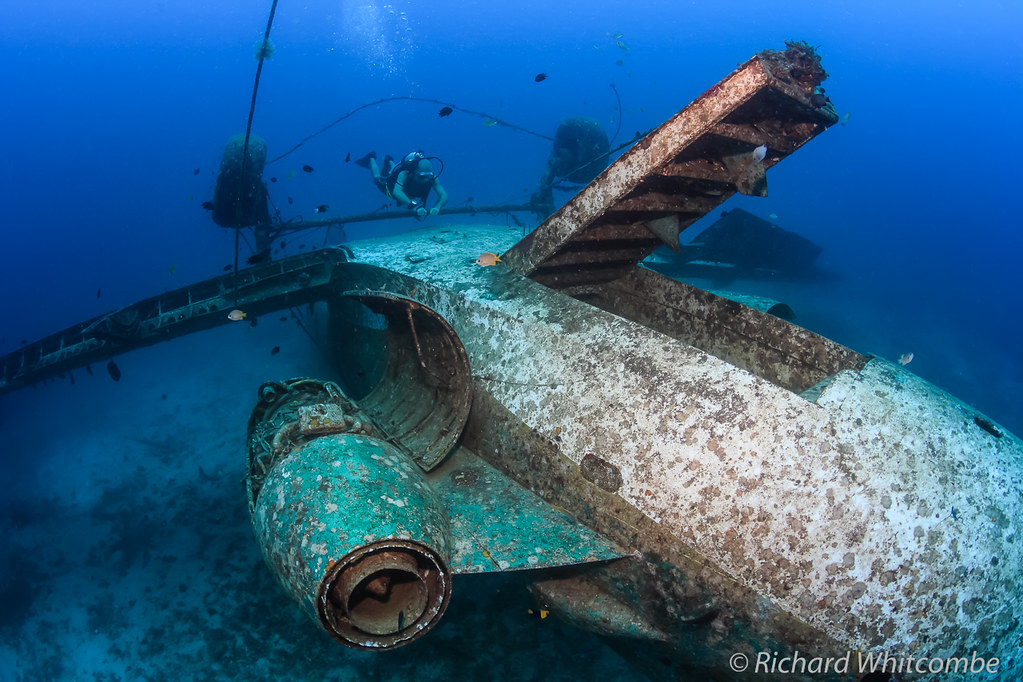 Tribird Scuba Diver Above The Upside Down Wreckage Of An