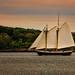 Sailing (Mike Dooley)