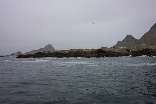 farallones w | by lineatus