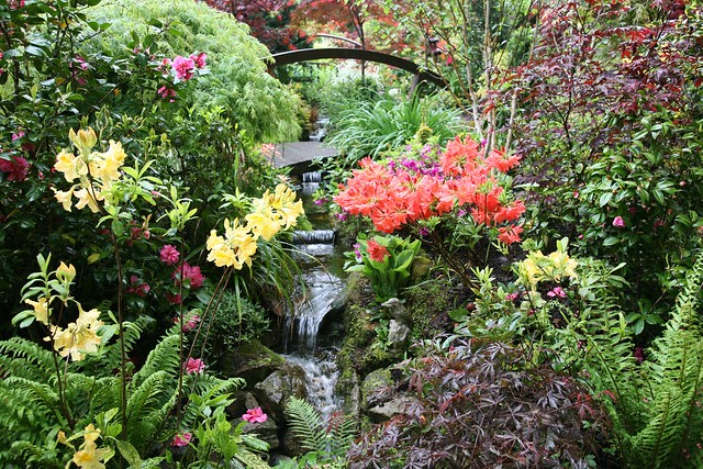 Lower garden stream may 2 english garden for all for Gardening 4 all seasons