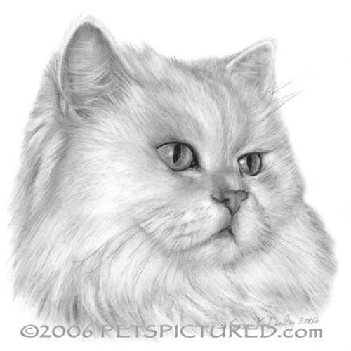 Black Shorthair Cat Painting