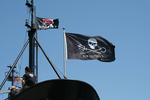 Sea Shepherd pirate flag | by John Englart (Takver)