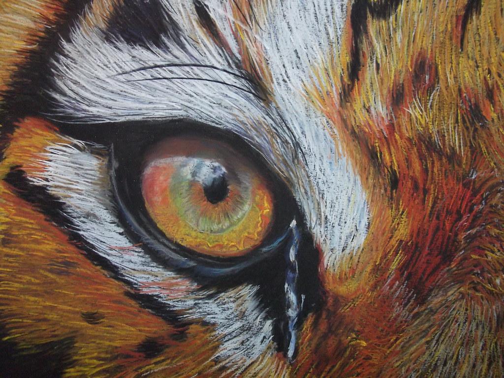 Tiger Eye Close Up Detail Soft Pastel On Cardboard
