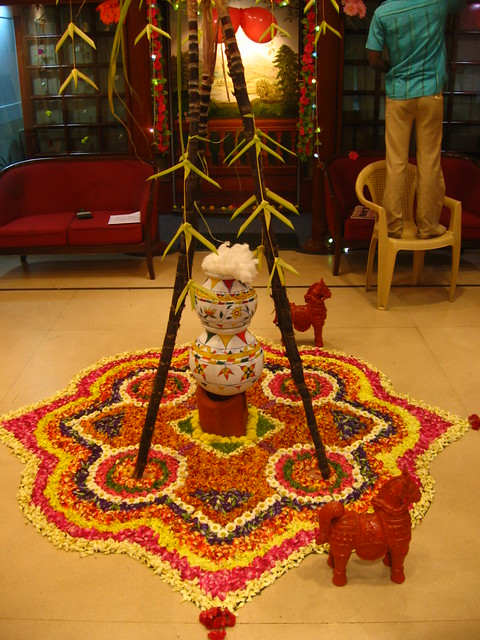 Comodo Pongal Our Office Celebrate Pongal Festival Today