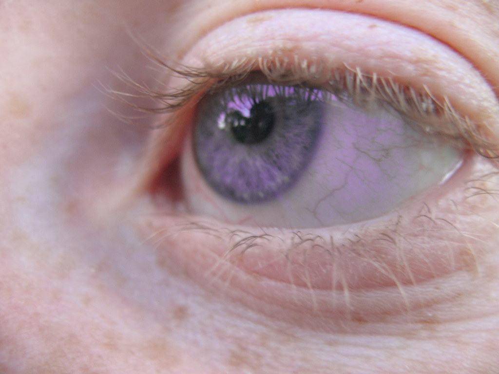 Violet Eye | Charlie Butterfly | Flickr