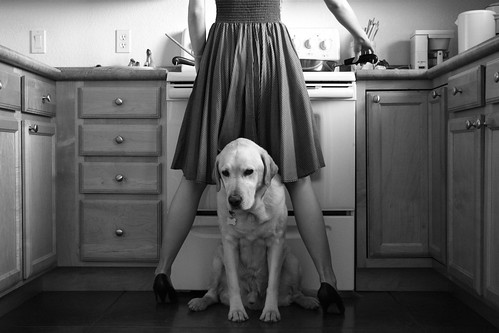 someone's in the kitchen with... | by Christina Lutze