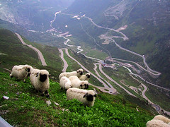 Furka Pass | by Hill Special