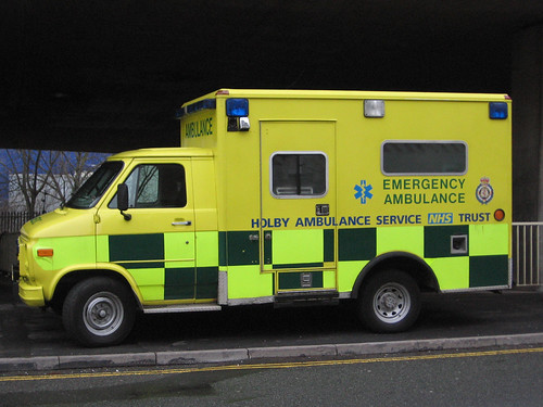 Ambulance Gervice For Small Dogs In Hertfordshire